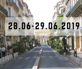 28-29 июня 2019 г. , Мастер-класс по бариатрической хирургии. Монпелье, Франция